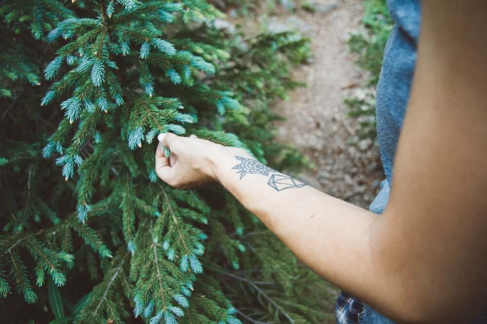 woman with a small tattoo touching a pine tree