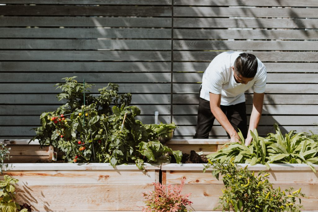 4 healthy habits to add to your daily routine | a man gardening